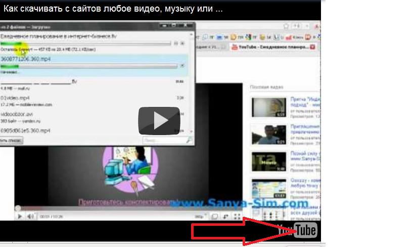 как скачать всё видео с сайта