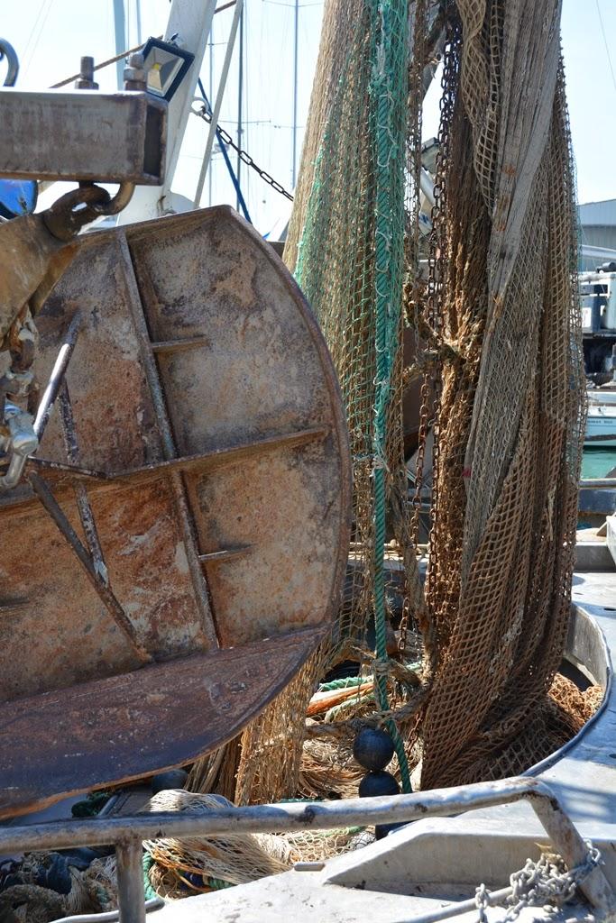 Fisher's port Rimini net