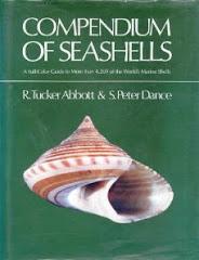 Conpendium of SeasShells