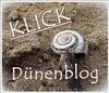 Griesheimer Düne