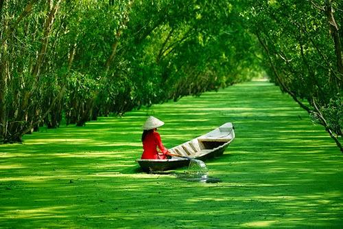 Ngm Nhn Hnh Nh P M Hn V Phong Cnh Thin Nhin