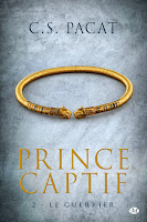 http://lachroniquedespassions.blogspot.fr/2015/03/prince-captif-tome-2-le-guerrier-cs.html