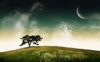 Full Hd Free nature Desktop Background wallpaper