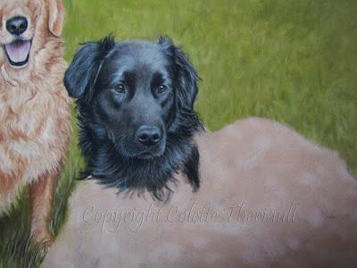 black Labrador retriever painting in progress