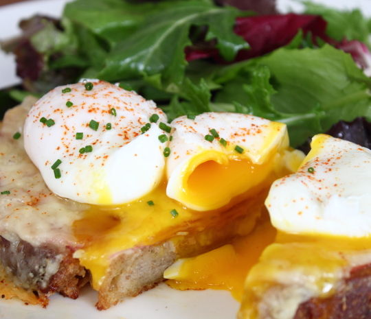 Food wishes video recipes you can count on monte cristo benedict food wishes video recipes you can count on monte cristo benedict for mothers day brunch forumfinder Image collections