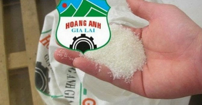"""Vì sao doanh nghiệp mía đường Việt nên """"tập cạnh tranh"""" với HAGL?"""