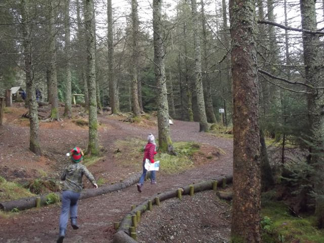 Stick Man trail Whinlatter