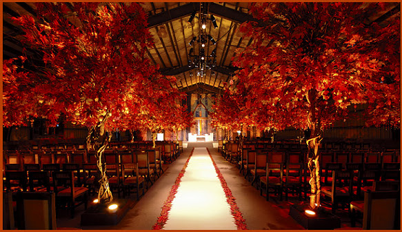 Wedding Ideas and Collections: Search results for wedding