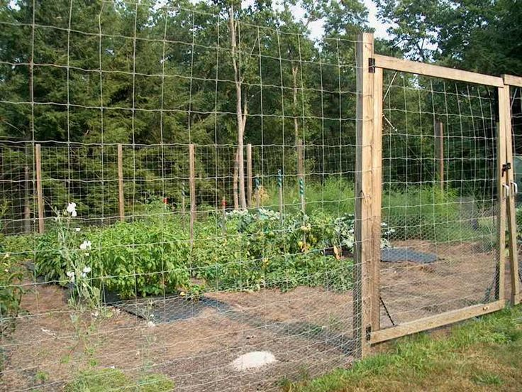 Tar m siteniz sebze bah esi haz rlama making the for Vegetable garden fence ideas