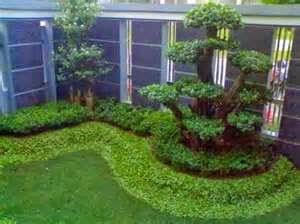 Contoh Taman Rumah Minimalis Sederhana