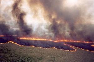fotografia danos incendio: