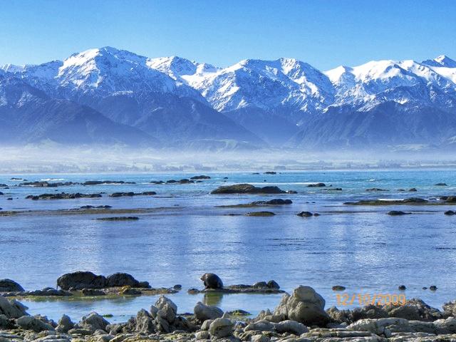 Península de Kaikoura, donde los lobos marinos duermen y las ballenas posan.