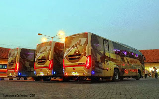 Rear View Scorpion King Trans Zentrum