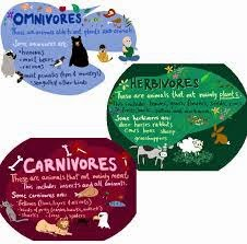 http://tx.english-ch.com/teacher/jocelyn/kids-a/herbivore-carnivore-and-omnivore/