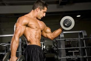 Egg Shaped Biceps