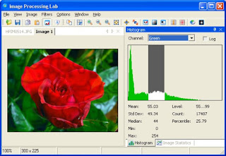 image processing,image,project ideas