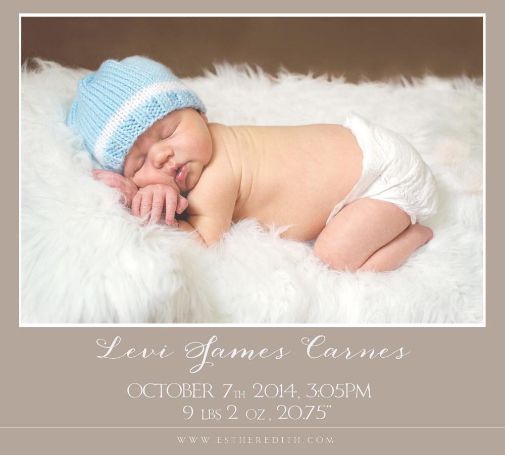 Newborn Photographers Massachusetts