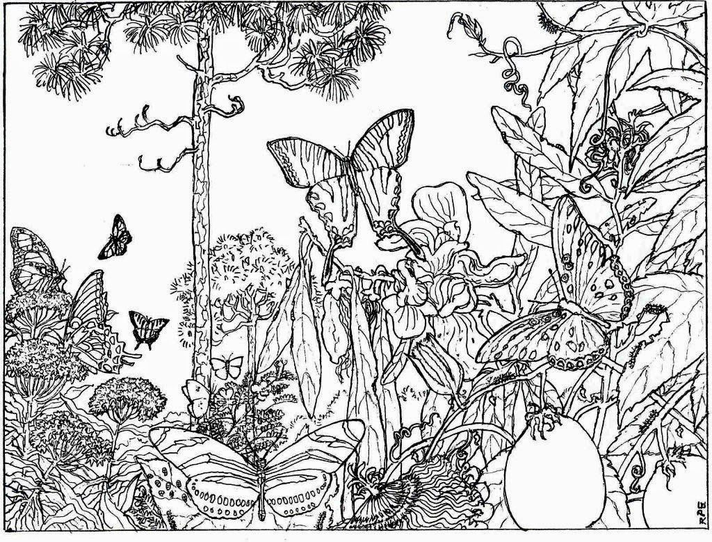 Coloring Pages Landscape Coloring Pages For Adults landscape coloring pages for adults free adult nature forest