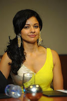 Pooja Kumar cute Spicy still