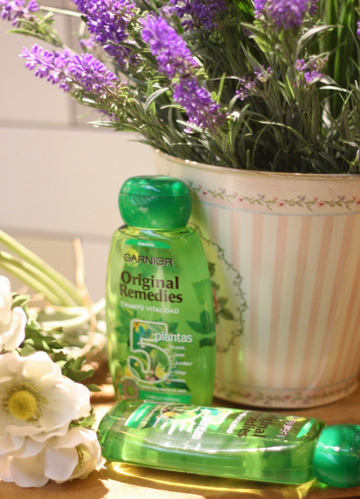 photo-garnier-original_remedies-5_plantas