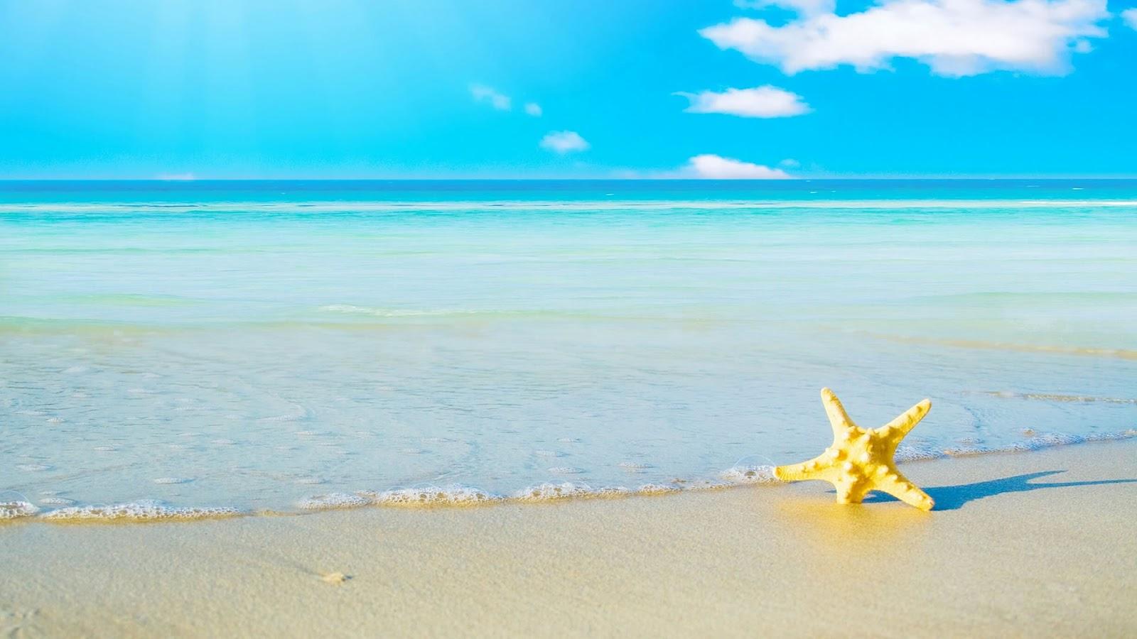 http://1.bp.blogspot.com/-v0AUQvCDlRI/T7p1zHI_PTI/AAAAAAAADmE/p7mlLYhZldY/s1600/Summer+Breeze+3.jpg