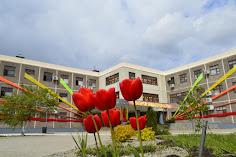 Сайт моей школы 96, Краснодар
