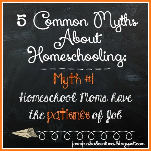 5 Common Myths About Homeschooling: #1 Homeschoolers Have the Patience of Job