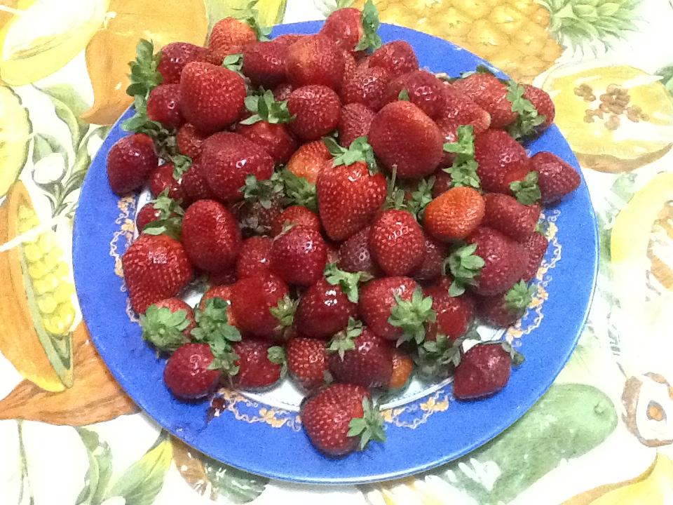 Magias en la cocina sorbete de fresa casero - Hacer sorbetes caseros ...