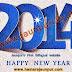 नववर्ष २०१४ की शुभकामनाएं और एक ख्याल क्या यह भी १९४७ की तरह आजादी का साल होगा ?