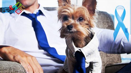 Cão e homem com gravata azul