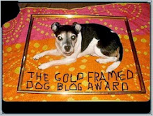 The Gold Framed Dog Blog Award