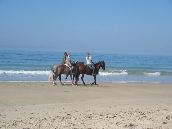 Cabalgata en la playa