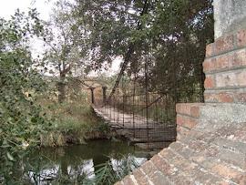 El Puente visto de otro lado