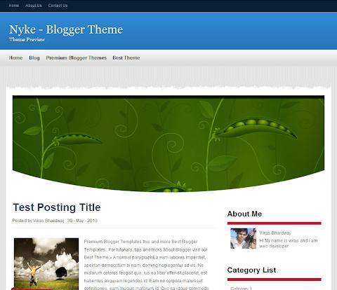 Nyke Blogger Theme