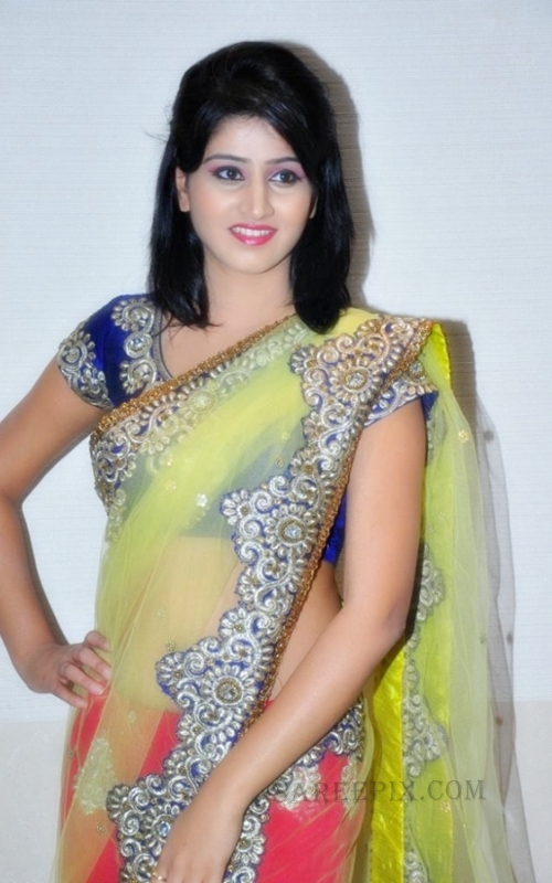 Shamili agarwal in saree at Desire exhibition and Sale 2013 in Hyderabad