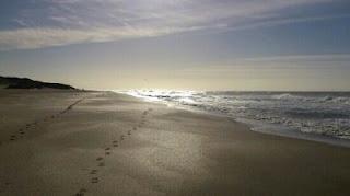 huella en la arena de una caminata matutina en cariló