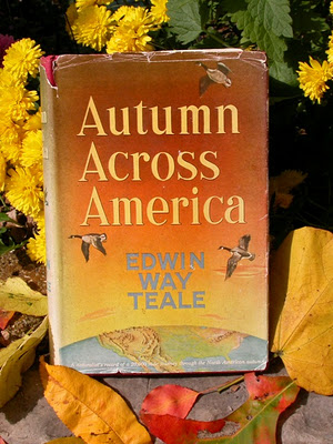 Autumn Across America4