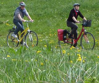 Radfahrer, Fahrrad, Radtour, Natur