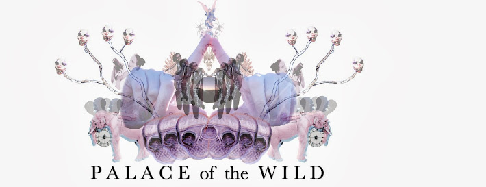 palace of the wild
