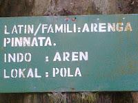 Keterangan pada papan nama di setiap pohon dalam kompleks TAL