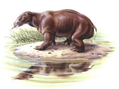 prehistoric mammals Desmostylus