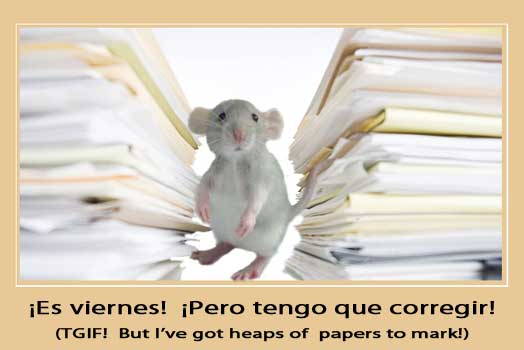 Mouse lost drowning under heaps of papers