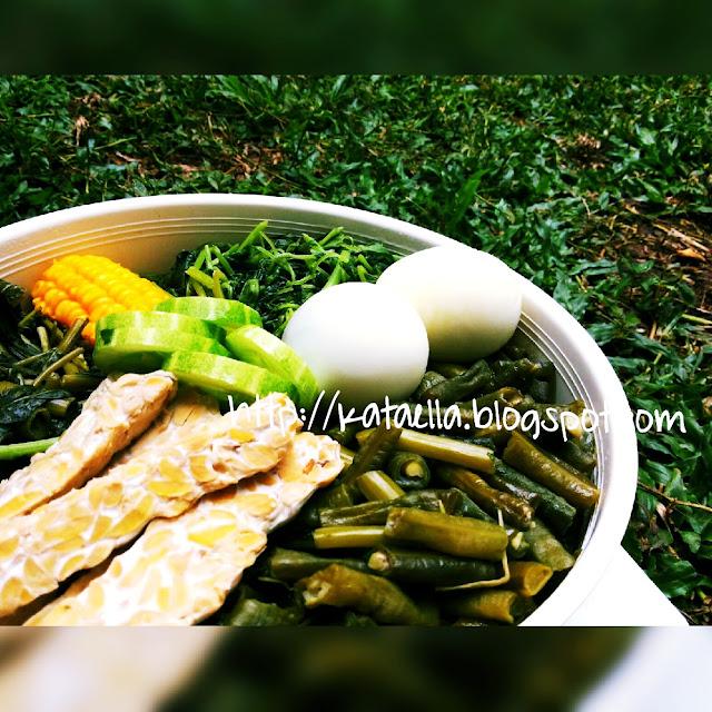 http://kataella.blogspot.com/, Ella Nurhayati, Emak-emak blogger menulis, booster ASI, menu diet sehat, manfaat sayuran bagi tubuh, manfaat sayur, agar ASI tetap lancar