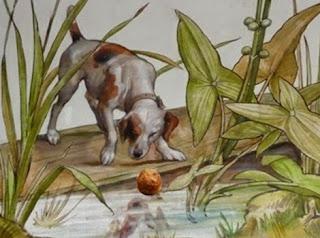 L'immagine riflessa del cane (Fedro)