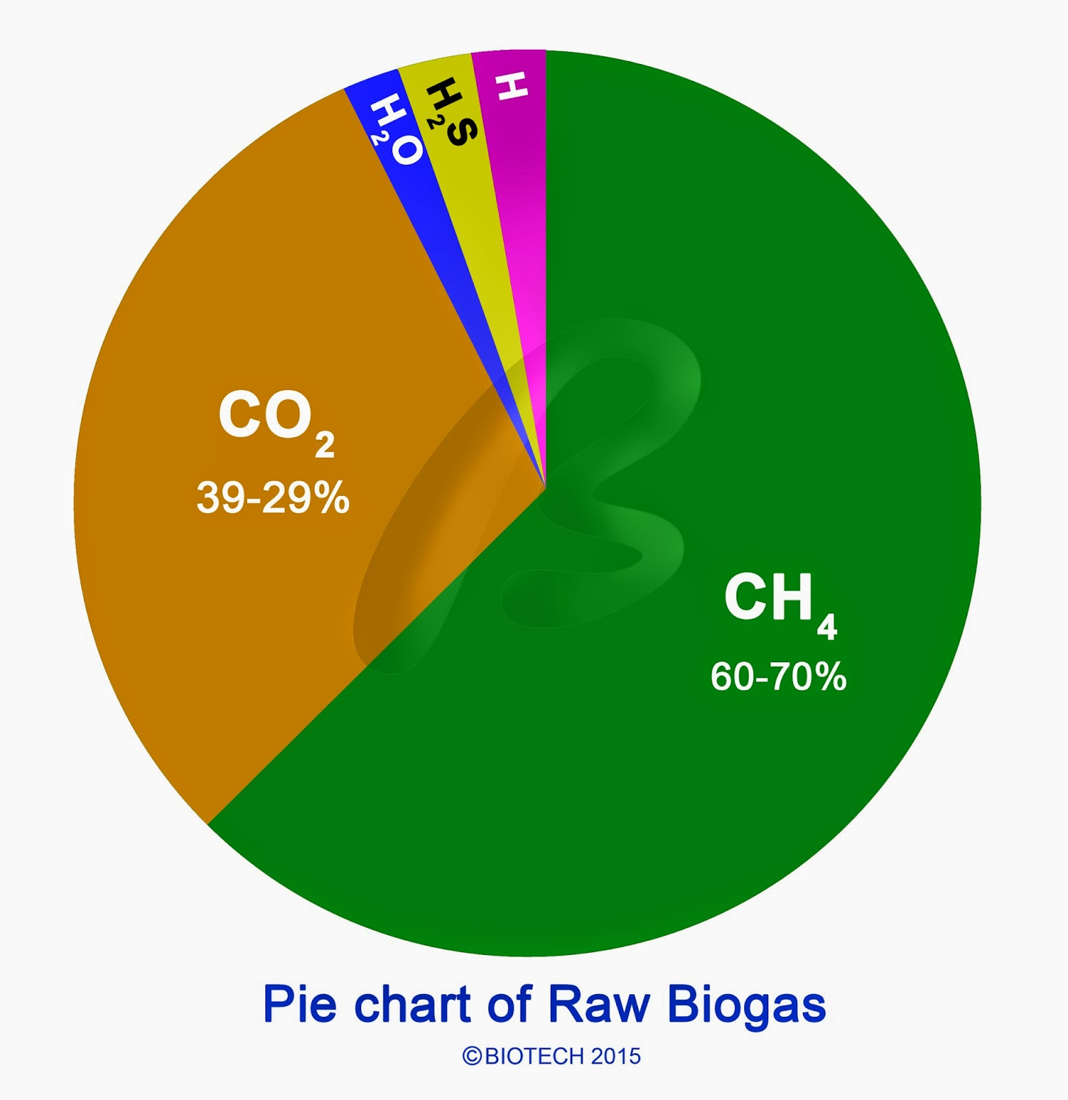 electricity generation from biogas pdf