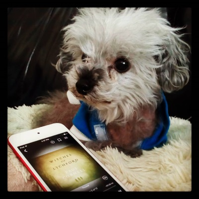 Murchie lays on a fuzzy, cream-coloured pillow. His ears are perked and his paws are tucked under him. He wears a blue hoodie with white trim. Beside him is a white iPod with Witches of Lychford's hazy, yellow-toned cover on its screen.