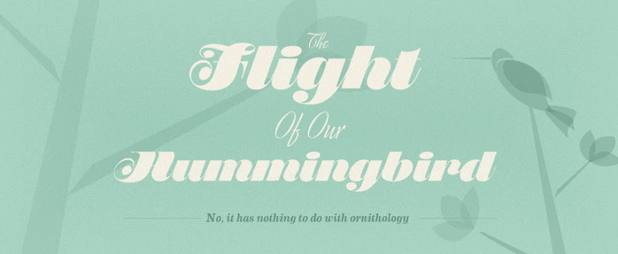 The Flight of our Hummingbird