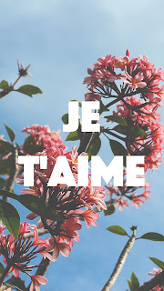 Valentine's Day iPhone Wallpapers: Je t'aime, mon amor