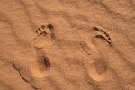 Mis pies libios