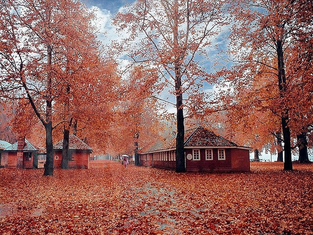 essay on autumn in kashmir